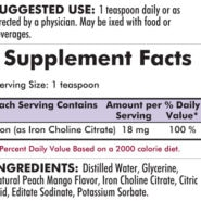 Iron Liquid - Bio-Max Series - 8oz - 240ml - INGREDIENTS